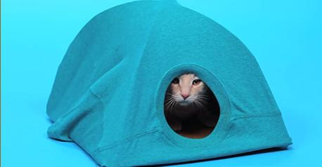 Una casa para tu gato